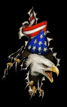 Friggin awesome work and its all airbrush Patriotic Pictures, Eagle Pictures, American Spirit, American Flag, Eagle Drawing, Patriotic Tattoos, Eagle Art, I Love America, Flag Art