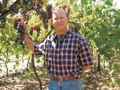 Mark Lyon, Sebastiani Vineyards and Winery Winemaker