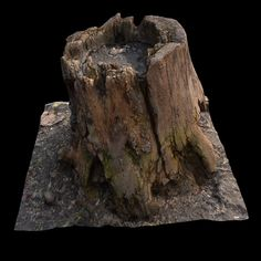 ArtStation - old stump, Valery Krukovets