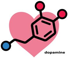 Dopamine is essential for Libido and Quality Of Life WHAT DAMAGES DOPAMINE RECEPTORS: Porn * Alcohol * Excessive Internet Browsing * Junk Food * Nicotine * Drugs (Cocaine, MDMA etc) * Excessive Marijuana Use * Television * Video Games WHAT REPAIRS DOPAMINE RECEPTORS: Cardiovascular Exercises and Physical Activities * Sunlight Exposure * Socializing * Being Outside The House * Meditation * Good Diet (Protein, Fruit & Vegetables) * Yoga * Receiving support/encouragement * Increased social…