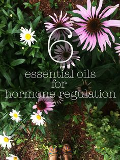 Essential Oils...For a PERIOD of Time {Hormone Regulation Tips} | ohdeardrea | Bloglovin'