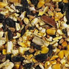 Prince Wild Bird Seed  Mix for Squirrels 40 lb Bag