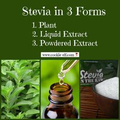 Stevia is a natural substitute sweetener with no calories or carbs. You can substitute stevia for sugar in cookie recipes! Use powdered or liquid stevia. No Bake Cookies, Baking Cookies, Sugar Substitute, Cookies Ingredients, Baking Tips, Stevia, Healthy Drinks, Low Carb Recipes, Cookie Recipes