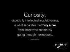 """Great quote by Tom Robbins. Never stop being curious. Always ask, """"What if?"""""""