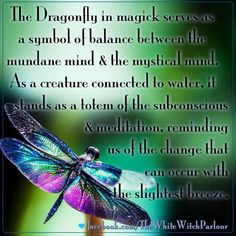 With an graceful dance of their wings, The Dragonfly has much to tell you about your future... Listen to the messages of Nature
