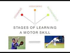 Periodisation poster hsc pdhpe improving performance for Stages of motor development