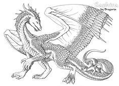 Free coloring page coloringadultdragon An impressive Dragon to