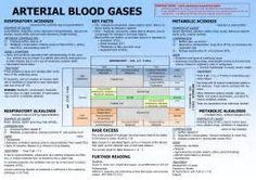 Nurse Nightingale: {ABGs} Arterial