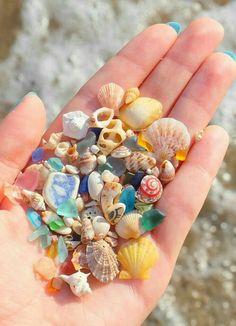 Mermaid Jewelry, Ocean Jewelry, Mermaid Necklace, Mom Jewelry, Sea Glass Necklace, Shell Jewelry, Jewelry Gifts, Glass Jewelry, Valentines Day Gifts For Her