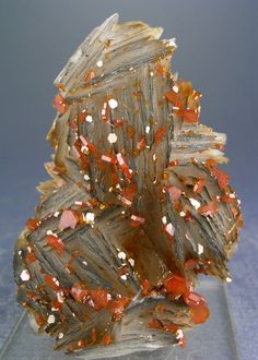 "bijoux-et-mineraux: ""Vanadinite on Barite - Mibladen, Morocco "" Minerals And Gemstones, Rocks And Minerals, Crystals And Gemstones, Stones And Crystals, Cool Rocks, Beautiful Rocks, Mineral Stone, Rocks And Gems, Quartz Crystal"