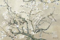 Almond Branches in Bloom, San Remy, c.1890 (tan), by Vincent van Gogh