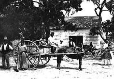 US Slave: The Double Crossed Freedmen: 40 Acres and a Mule