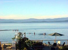 Book Buena Vista by the Sea, Qualicum Beach on TripAdvisor: See 120 traveler reviews, 44 candid photos, and great deals for Buena Vista by the Sea, ranked #4 of 10 hotels in Qualicum Beach and rated 4.5 of 5 at TripAdvisor.
