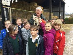 Prep school year 3and 4 meet our new lambs #abbotsholmeschool #farm #lambs #lambing