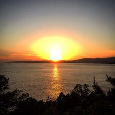 足摺半島  the ashizuri peninsula