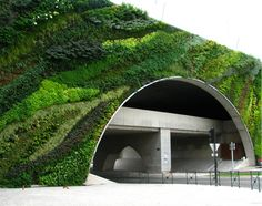 Vertical garden by designer Patrick Blanc. See more of his work here http://www.verticalgardenpatrickblanc.com/