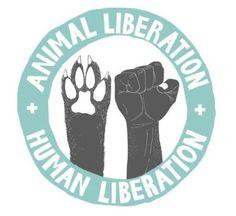 Symbole Protection, Vida Animal, Vegan Quotes, Vegan Memes, Animal Activist, Why Vegan, Stop Animal Cruelty, Stop Animal Testing, Vegan Animals