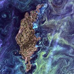 Terra vista do espaço - 30/07/2012  Grandes aglomerações de fitoplâncton desenham redemoinhos na água escura em volta da ilha sueca de Gotland, no Mar Báltico.