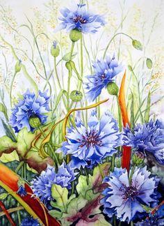 "Watercolour ""Cornflowers"" Maria Inhoven"
