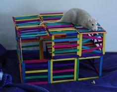 Popsicle stick rat playground
