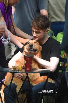 Here Is A Picture Of Daniel Radcliffe Walking 12 Dogs While Smoking A Cigarette