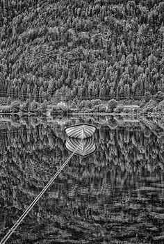 Reflection in black and white ~ Marius Amtoft ~♛ Black White Photos, Black And White Photography, Amazing Photography, Art Photography, Reflection Photography, Grafik Design, Shades Of Grey, Great Photos, Monochrome