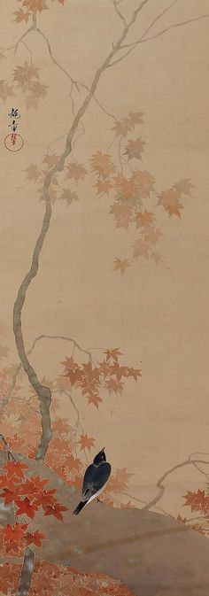 Bird in maple tree. Japanese hanging scroll painting.: