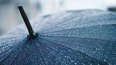 ...rain....