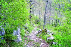 Roccasicura Sentiero