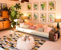 Another evie kemp room, I like the plants against the paler walls, and the fun colours on the couch! Plants on a smaller scale probably, and could incorporate into my picture wall.