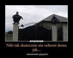 Very Funny Memes, Wtf Funny, Hilarious, Polish Memes, True Stories, Poland, Haha, Have Fun, Jokes