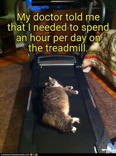 My doctor told me that I needed to spend an hour per day on the treadmill.