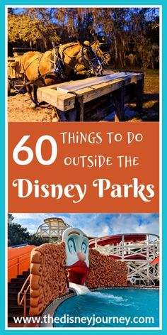 60 Things to do outside the Disney parks