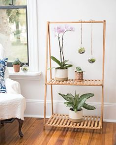 Bamboo plant stand with hanging bar bamboo plants, indoor bamboo plant, ind Decor, Home Diy, Indoor Decor, Diy Hanging Shelves, Diy Plant Stand, Diy Home Decor, Home Decor, Room Decor, Apartment Decor
