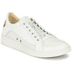 10989ea2b73 23 imágenes increíbles de Zapatos LACOSTE