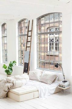 High ceilings, large windows, minimal decoration and one beautiful plant. That's all you need