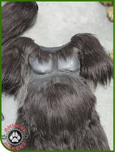 Image result for professional animal suit costumes