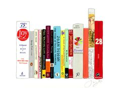 Jane Mount will paint you your ideal bookshelf - customized! Awesome gift idea!