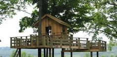 Love tree houses I  have on in my back yard