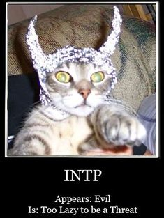 You know you're an INTP when...
