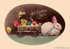 1910 Easter photo postcard