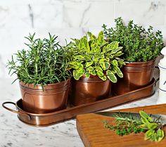 Indoor Herb Garden, Love copper pots