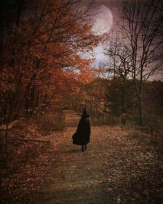 14 Gorgeous Harvest Moon Photos That Will Make You Love Autumn Samhain Halloween, Holidays Halloween, Spooky Halloween, Vintage Halloween, Halloween Decorations, Samhain Decorations, Spooky 2, Halloween Countdown, Vintage Witch