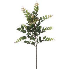 "Artificial 35"" Eucalyptus Spray (Set of 2)"