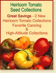 Great Savings - 2 New Heirloom Tomato Collections - Favorite Canning and High-Altitude Collections