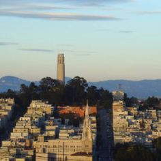 Coit Tower, San Francisco.  I walked up the hill and up to the lookout with my favorite group of Girl Scouts once.