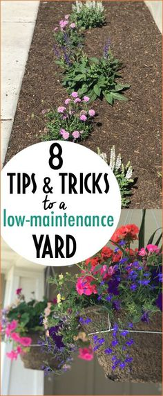 Tips to Keeping a Low Maintenance, Yet Beautiful Yard. Yard hacks to keeping your flower beds free of weeds and easy to maintain.