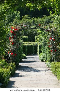 Garden walkway with rose arch