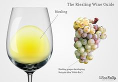 The Taster's Guide to Riesling Wine