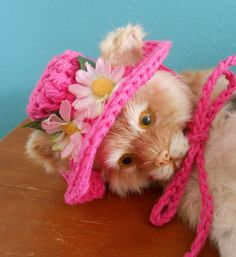 Crocheted Sunhat for Cats or XS Dogs Crocheted in lightweight hot pink cotton yarn for Spring and Summer comfort. It has a cute floppy brim decorated